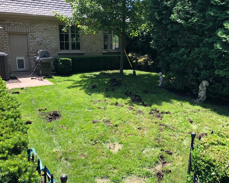 Pet-Lawn-Before-Artificial-Turf-GroTurf-Brian-01-min