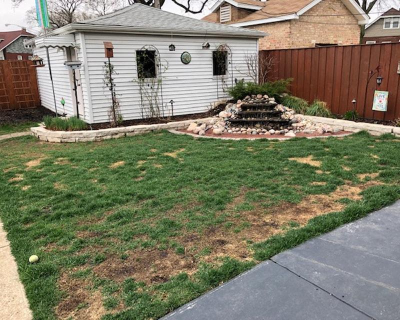 Pet-Lawn-Before-Artificial-Turf-GroTurf-Brian-02-min