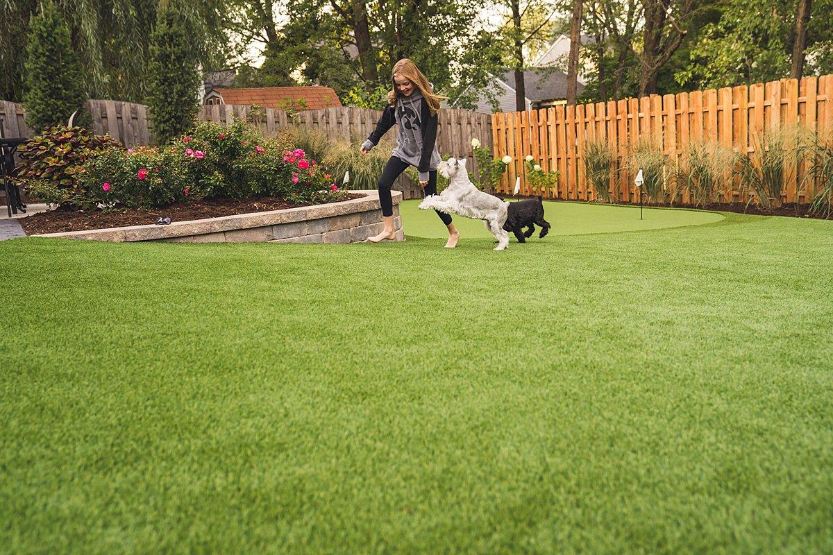 pet turf-pet grass-pet-grass-lawn-artificial-turf-chicago-turf company-fake grass-dog-pet run-dog run-6