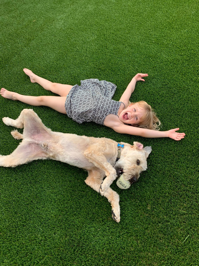Artificial-Grass-Yard-Kids-Pets-Dogs-Play